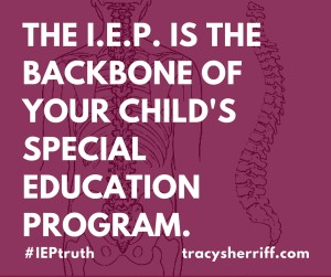 The I.E.P. is the backbone your child's Special Education Program.